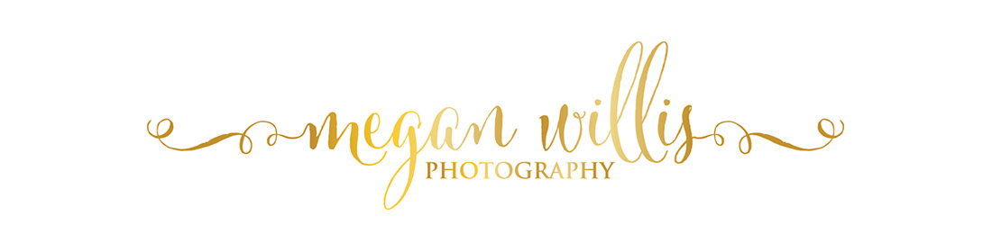 Megan Willis Photography | Sunshine Coast Newborn, Maternity & Family Photographer
